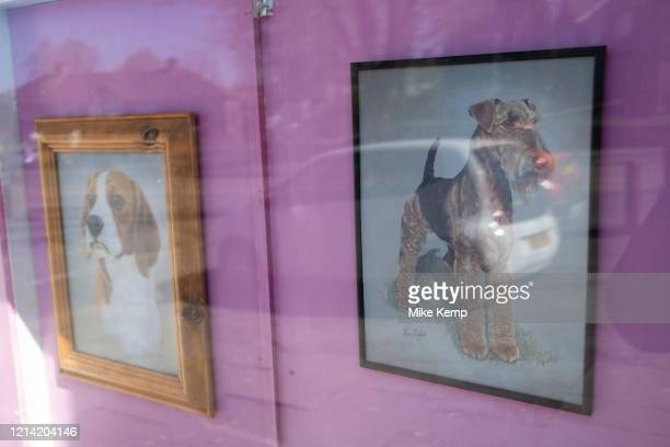 Framed pictures in a local dog groomers window on 14th April 2020 in Birmingham, England, United Kingdom. Dog grooming refers to both the hygienic...