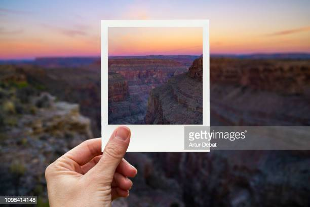 framing the grand canyon during sunset with polaroid picture from personal perspective. - 焦点 ストックフォトと画像