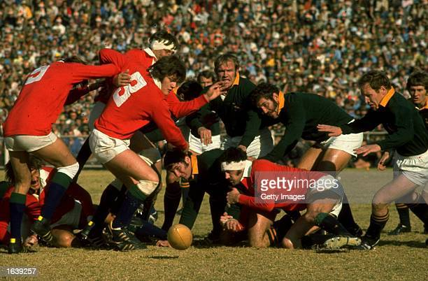 Fran Cotton and Davis Scramble of the British Lions charge down the lose ball during the Rugby Lions tour of South Africa South Africa Mandatory...