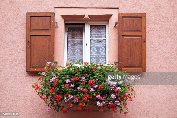 france, alsace, eguisheim, window with window box and geraniums - geranium stock pictures, royalty-free photos & images