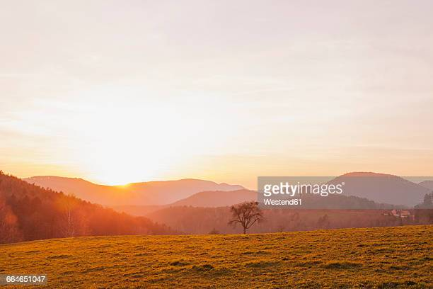 France, Alsace, Northern Vosges Regional Natural Park at sunset with view to Fleckenstein Castle