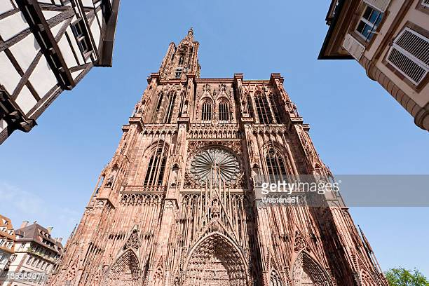 france, alsace, strasbourg, view of notre dame cathedral with frame houses - strasbourg stock pictures, royalty-free photos & images