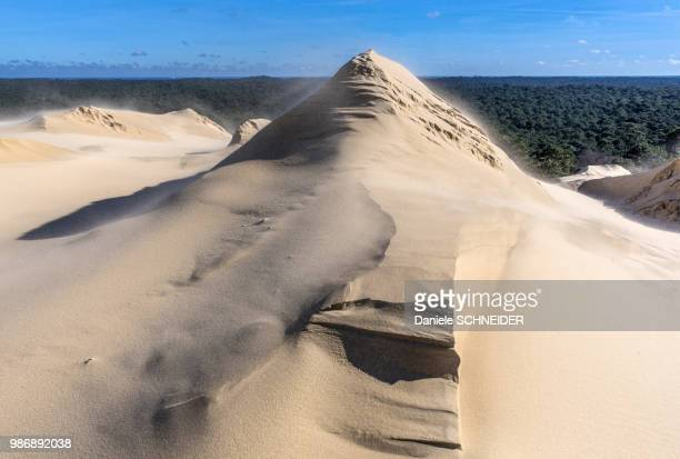 France, Arcachon Bay, natural sand sculptures on the dune de Pilat