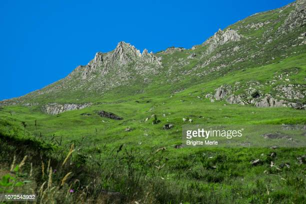 france, ariege, towards the pic de fonta and the col de pause - アリエージュ ストックフォトと画像