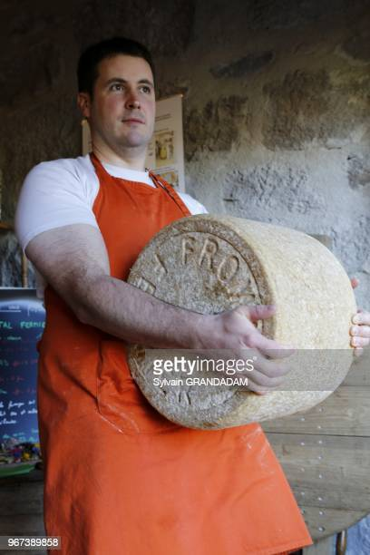 France, Auvergne, Cantal , natural regional park of the Auvergne volcanos, city of Murat, Nathalie and Alexis Meironen local cheese dairy// France,...