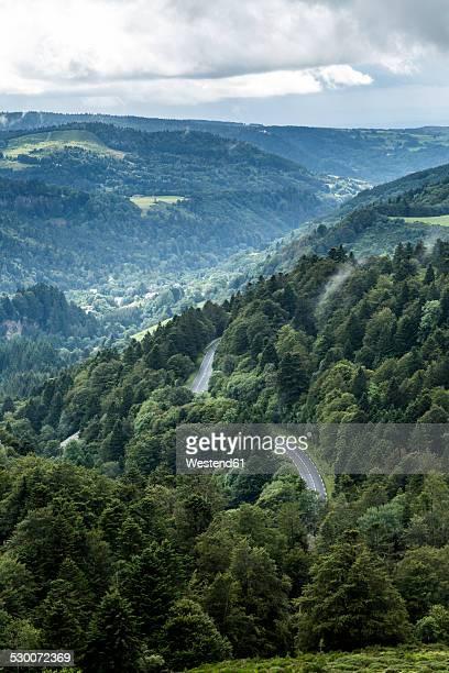 france, auvergne, nature reserve vallee de chaudefour - auvergne stock pictures, royalty-free photos & images