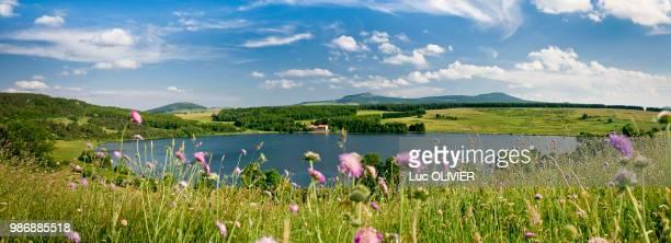france, auvergne-rhones-alpes, haute-loire, the lake of saint-front in the mezenc area - auvergne stock pictures, royalty-free photos & images