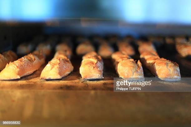 france, bakery. bread - baguette photos et images de collection