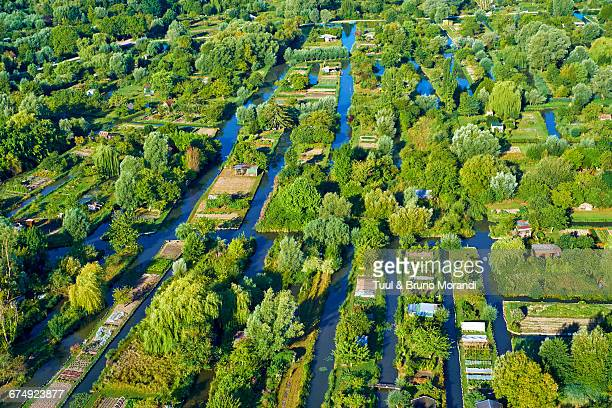 france, bourges, the marsh - cher stock pictures, royalty-free photos & images