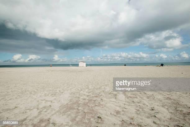 france, bretagne, brittany. groix island. les grands sables beach - golfe du morbihan photos et images de collection