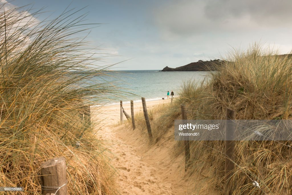 France, Bretagne, view to the sea with walkers on the beach and beach dunes in the foreground : Stock Photo