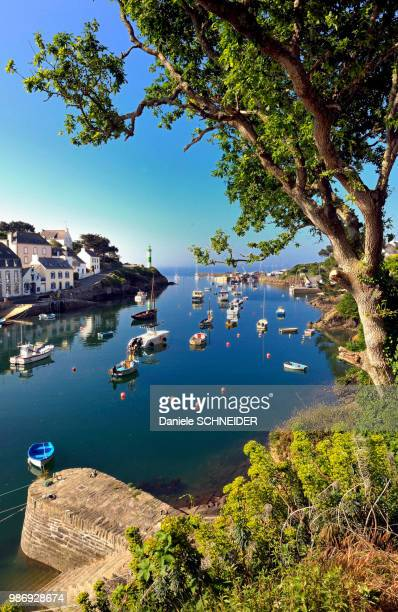france, brittany, finistere, doelan port in clohars-carnoet - finistere stock photos and pictures
