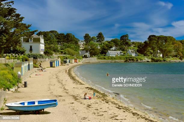 france, brittany, morbihan, great beach, ile aux moines - golfe du morbihan photos et images de collection