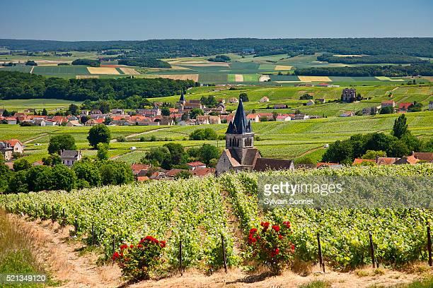 france, champagne, village of villedomange - マルヌ県 ストックフォトと画像