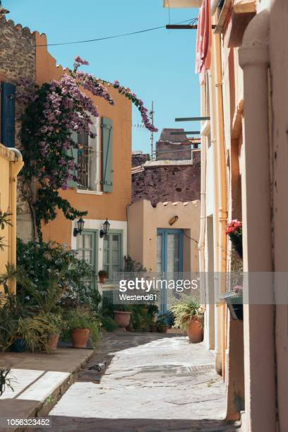 france, collioure, scenic alley in the town - collioure photos et images de collection