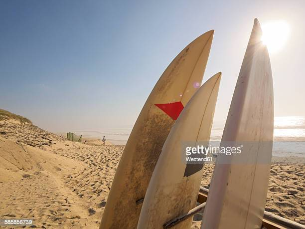 France, Contis-Plage, surfboards on the beach