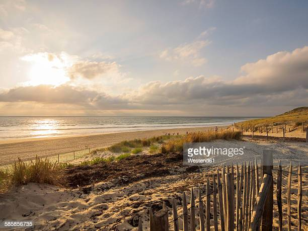France, Contis-Plage, view to the beach at twilight