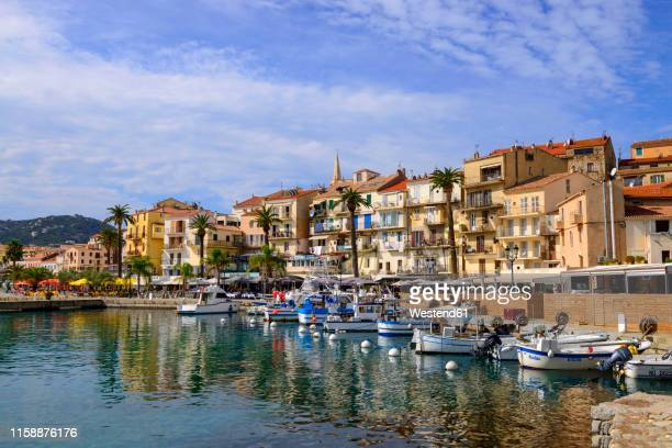 france, corsica, calvi, boats in the harbour - corse photos et images de collection