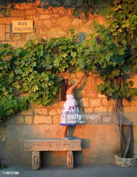 France, Dordogne, Domme, girl reaching for grapes.