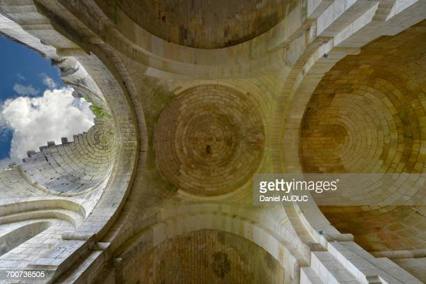 France, Dordogne, ruined ceiling of Boschaud Abbey
