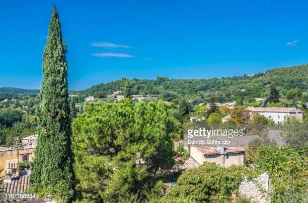 france, drome, the provencal baronnies regional natural park, general view of mollans-sur-ouveze - coniferous tree stock pictures, royalty-free photos & images