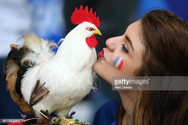 France fan kisses a Cockerel during the UEFA EURO 2016 Group A match between France and Albania at Stade Velodrome on June 15 2016 in Marseille France