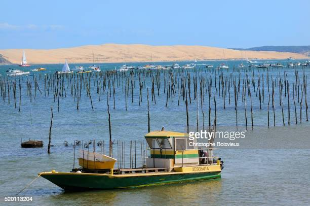 France, Gironde, Bassin d'Arcachon, Cap Ferret, Oyster farm and dune of Pilat