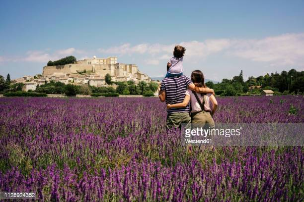 france, grignan, back view of familiy standing in lavender field looking to the village - france stock pictures, royalty-free photos & images