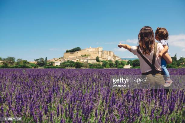 france, grignan, back view of mother and little daughter standing together in lavender field looking at village - tourisme photos et images de collection