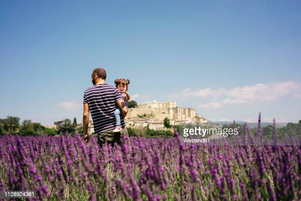 France, Grignan, father and little daughter together in lavender field