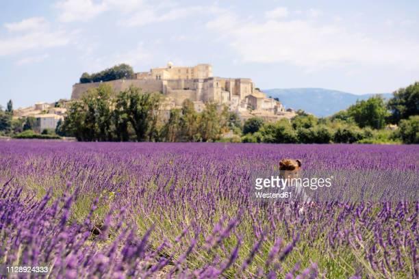 France, Grignan, happy baby girl in lavender field
