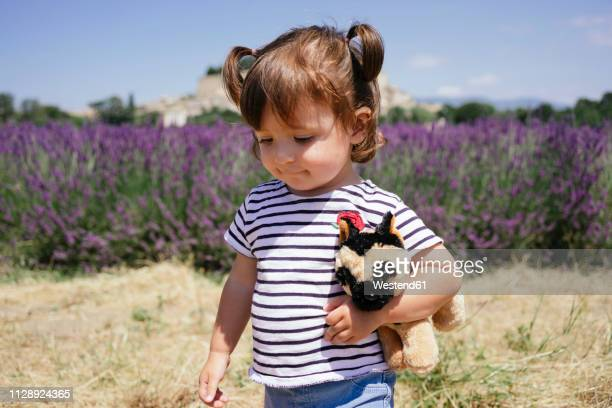 France, Grignan, portrait of baby girl with soft toy in front of lavender field