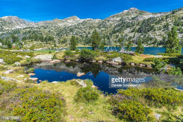 france, hautes-pyrenees, haute vallee d'aure, neouvielle national nature reserve, the aumar lake - オートピレネー ストックフォトと画像