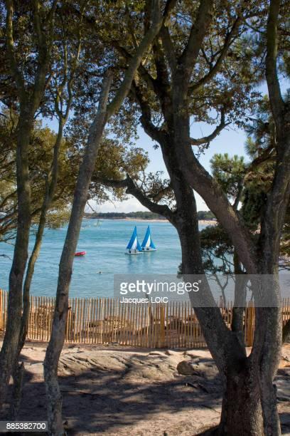 France, Island of Noirmoutier, Pointe de Saint-Pierre, two sailboats.
