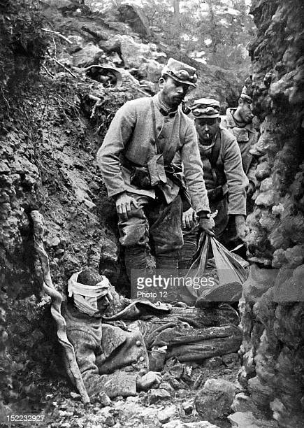 France June 30 World War I The Argonne battles A trench full of wounded and dead soldiers
