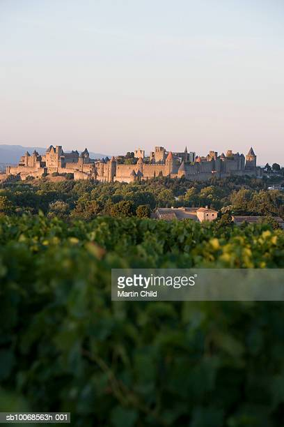 france, languedoc, carcassonne, castle walls from vinyard - carcassonne stock pictures, royalty-free photos & images