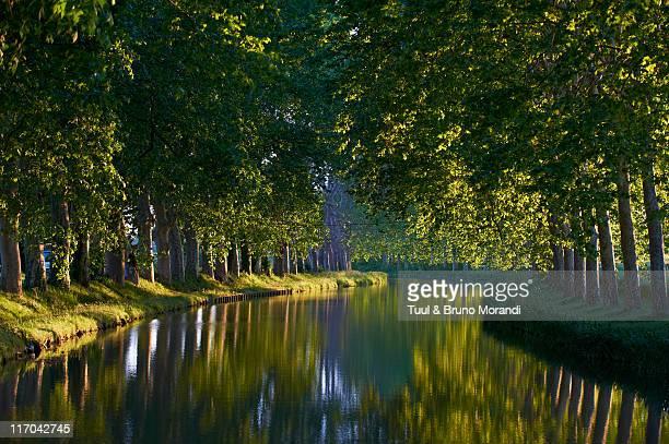 france, languedoc-roussillon, canal du midi - canal du midi photos et images de collection