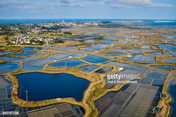 france, loire-atlantique, guérande, salt marshes from above - loire atlantique photos et images de collection