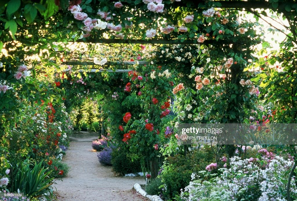 France Le Jardin Pepiniere De Morailles News Photo