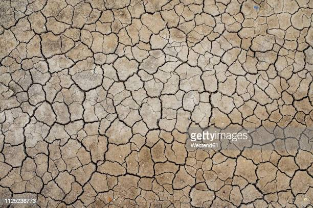 france, marais salants de guerande, dry cracked earth - sec photos et images de collection