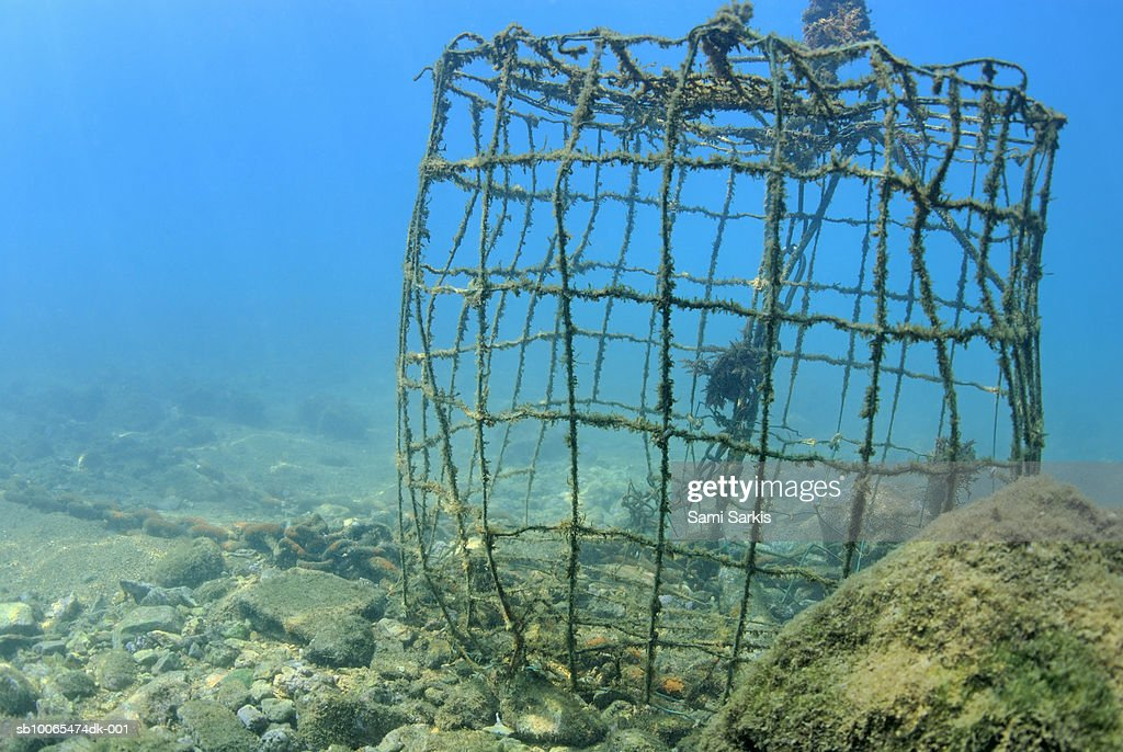 France, Marseille, Mediterranean Sea, old fishing cage underwater : Stock Photo