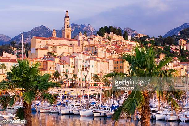 france, menton, townscape and marina, palm trees in foreground - french riviera stock pictures, royalty-free photos & images