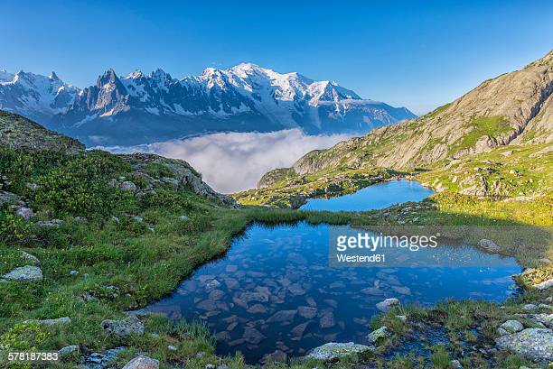 france, mont blanc, lake cheserys, small lakes in the morning - monte bianco foto e immagini stock