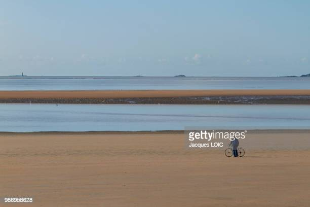 france, mouth of the loire at low tide. - geometriestunde stock-fotos und bilder