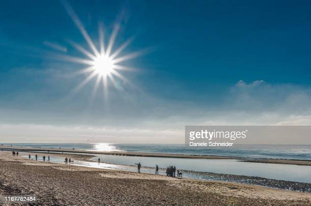 france, new aquitaine, arcachon bay, petit nice beach at low tide - gironde stock pictures, royalty-free photos & images