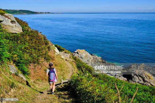 france, normandy, manche department, cotentin, cap de la hague, gréville-hague, coastal path - canale della manica foto e immagini stock