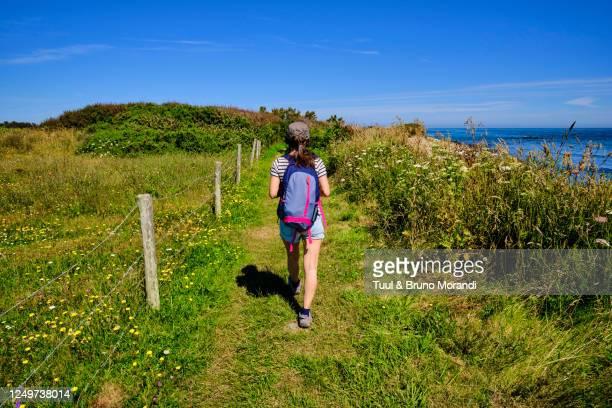 france, normandy, manche department, cotentin, omonville-la-rogue, coastal path - cotentin photos et images de collection