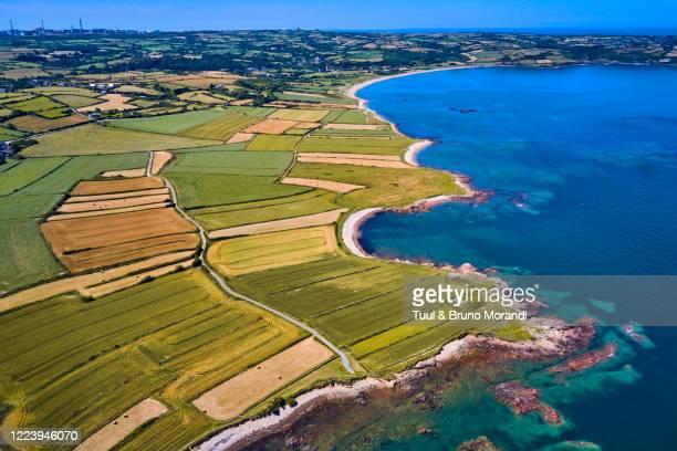 france, normandy, manche department, cotentin, omonville-la-rogue, la côte - cotentin photos et images de collection