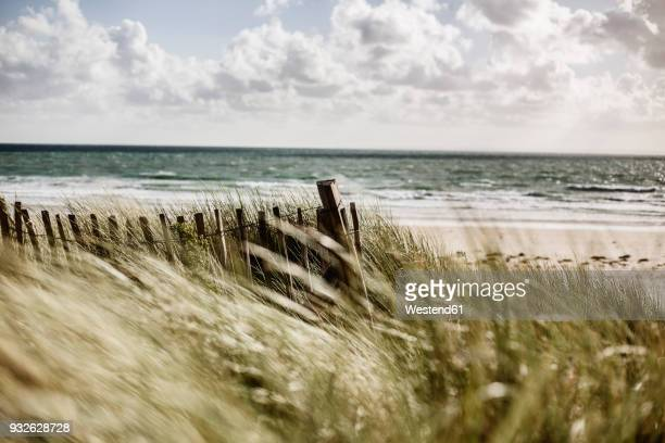 France, Normandy, Portbail, Contentin, wooden fence at beach dune
