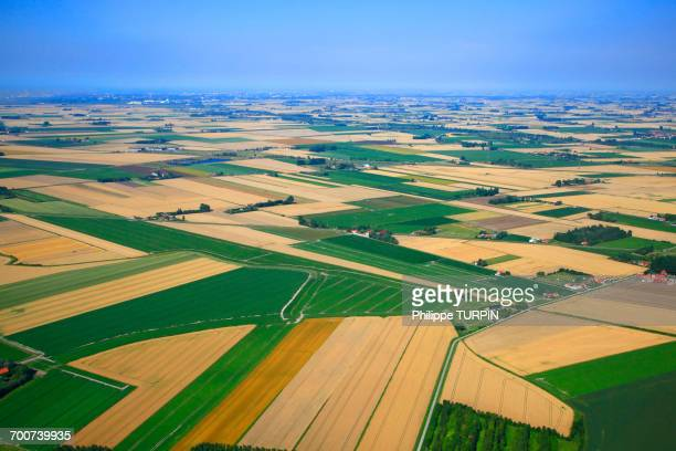 france, northern france, pas de calais, inland between calais, dunkerque and st-omer. - cultivated land stock pictures, royalty-free photos & images